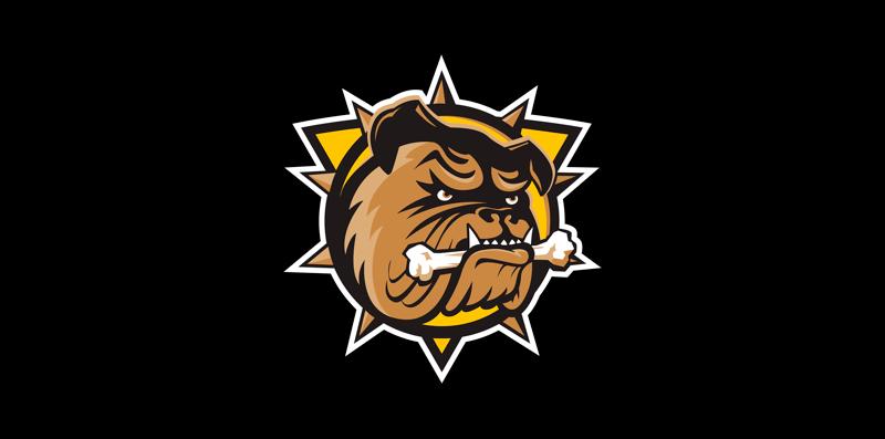 Art Gallery of Hamilton Member Benefits - Hamilton Bulldogs