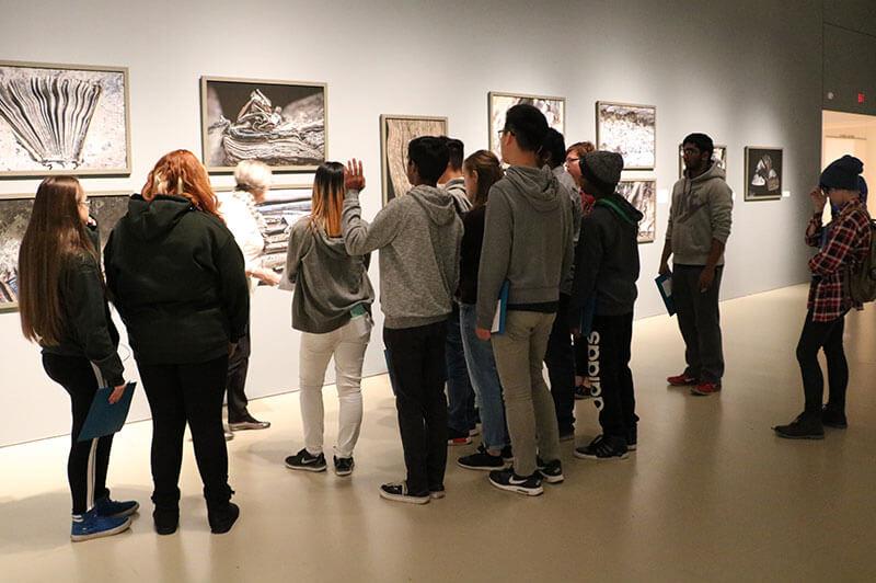 Art Gallery of Hamilton - Specialized Programs