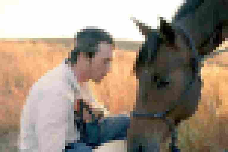 ilovefilmseries – The Rider