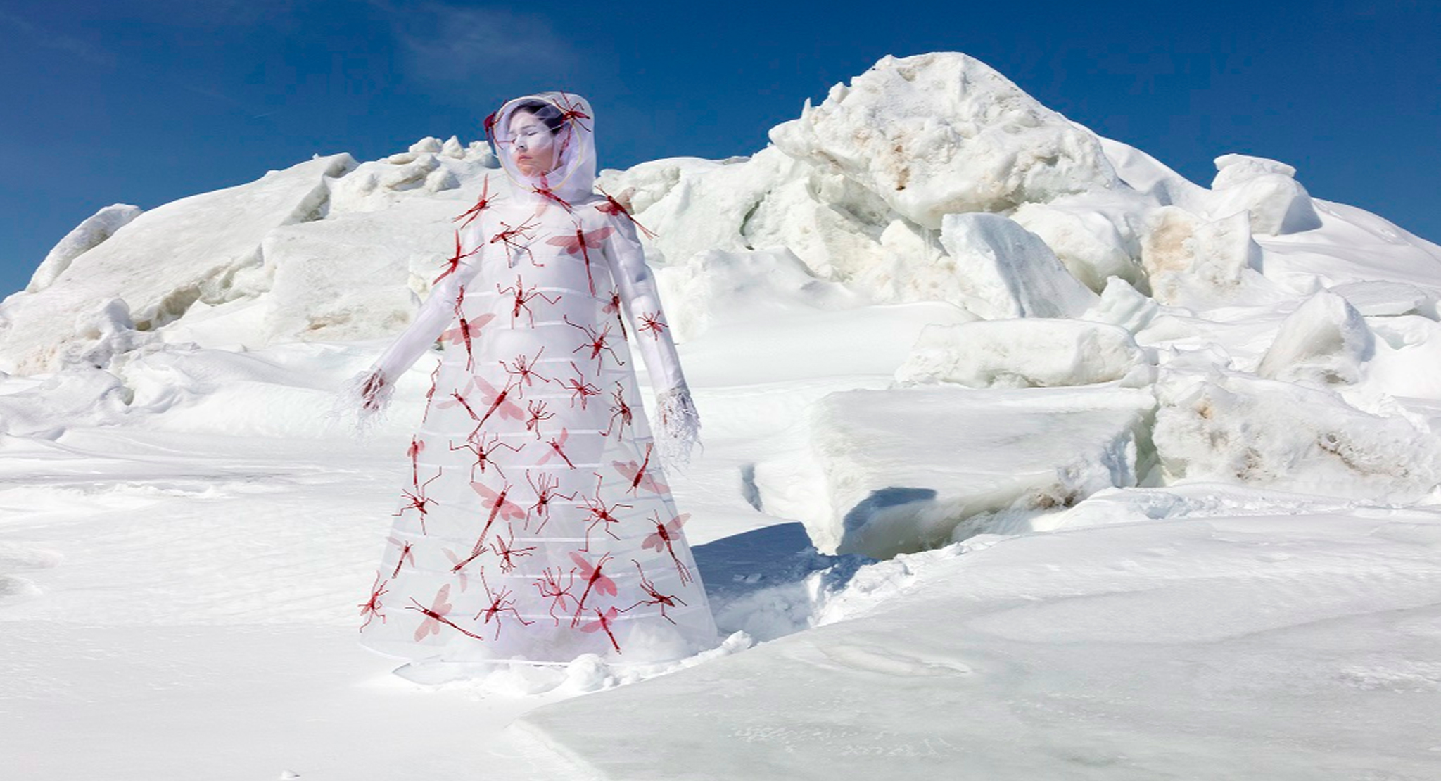 Collection Showcase: Meryl McMaster
